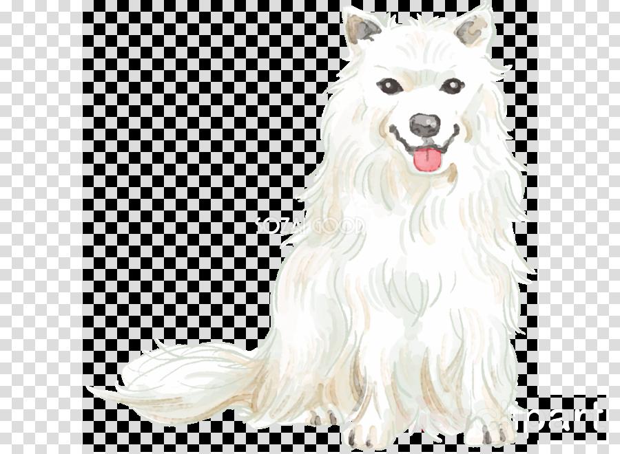 American eskimo dog clipart translucent graphic freeuse stock Canadian Eskimo Dog, Samoyed Dog, American Eskimo Dog, transparent ... graphic freeuse stock