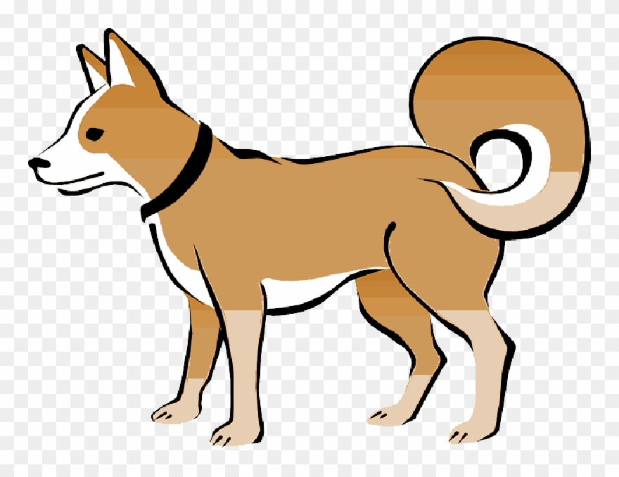 Animals with collar clipart freeuse Brown, Dog, Pet, Animal, Tail, Eskimo, Collar, Curly - Transparent ... freeuse