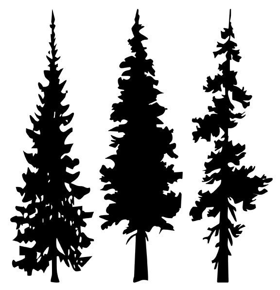 American forest clipart image free library Fir Tree Clipart forest - Free Clipart on Dumielauxepices.net   Draw ... image free library