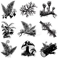 American forest clipart picture free North American Forest Lichens and Plants Illustration Set stock ... picture free