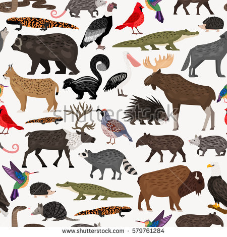 American forest clipart clip stock North America Nature And Wildlife Clipart & Free Clip Art Images ... clip stock