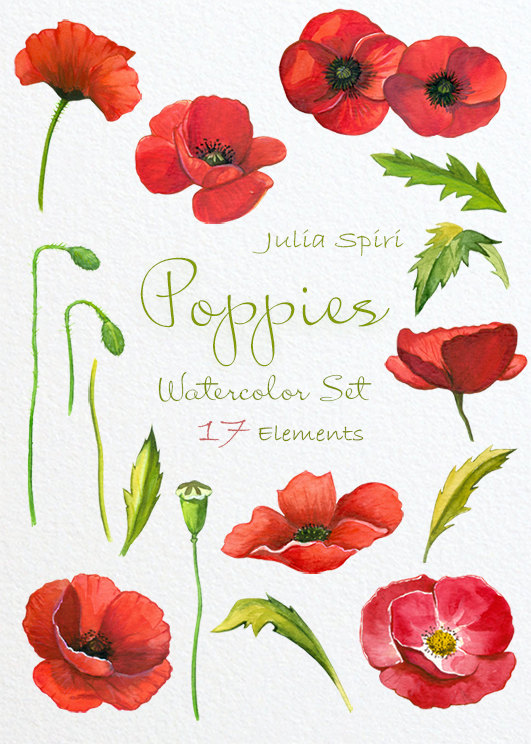 Ampola flower clipart transparent download Watercolor Poppies Flowers Clipart, Poppy Hand Painted, Watercolor ... transparent download