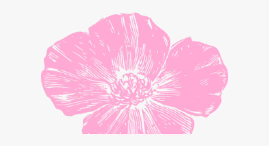 Ampola flower clipart picture transparent Poppy Clipart Pink Poppy - Hot Pink Flowers Clip Art #1673110 - Free ... picture transparent