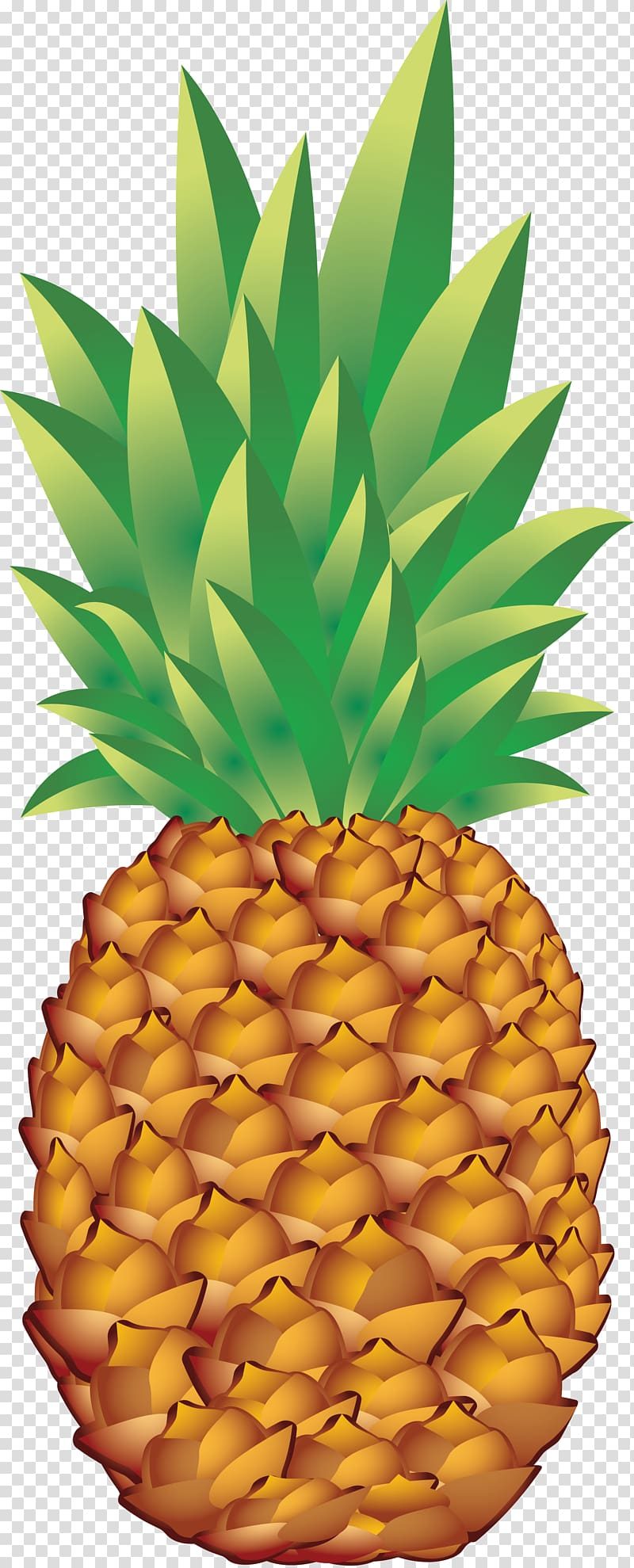 Ananas clipart png download Pineapple , Pineapple , free transparent background PNG clipart ... download