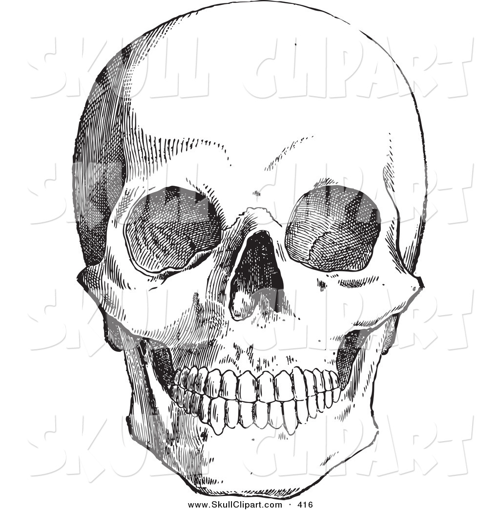 Anatomy clipart black and white png download Vector Clip Art of a Retro Black and White Anatomical Sketch of a ... png download