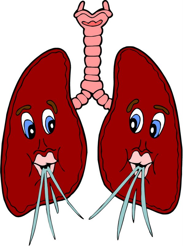 Breathing lungs clipart