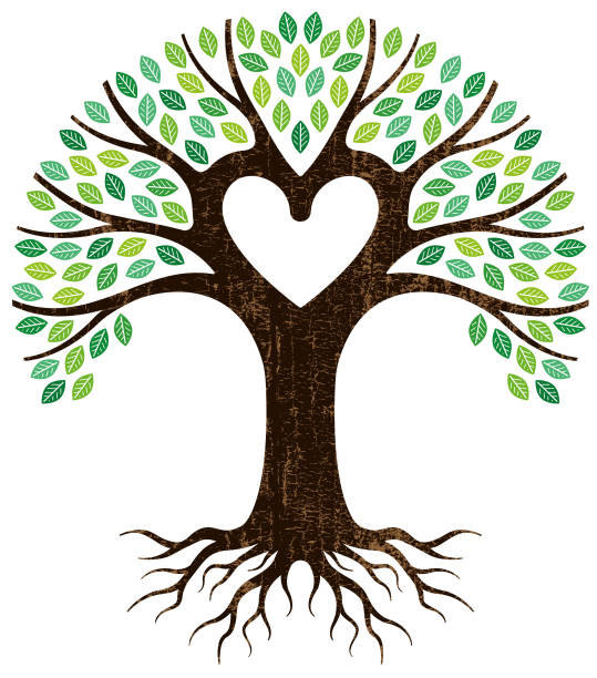 Ancestery links clipart vector freeuse library Grow Your Family Tree! Enroll in Our Free Genealogy Course - Mashpee ... vector freeuse library