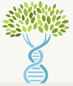 Ancestry clipart clipart library stock Ancestrydna is million people. Dna clipart tree banner library ... clipart library stock