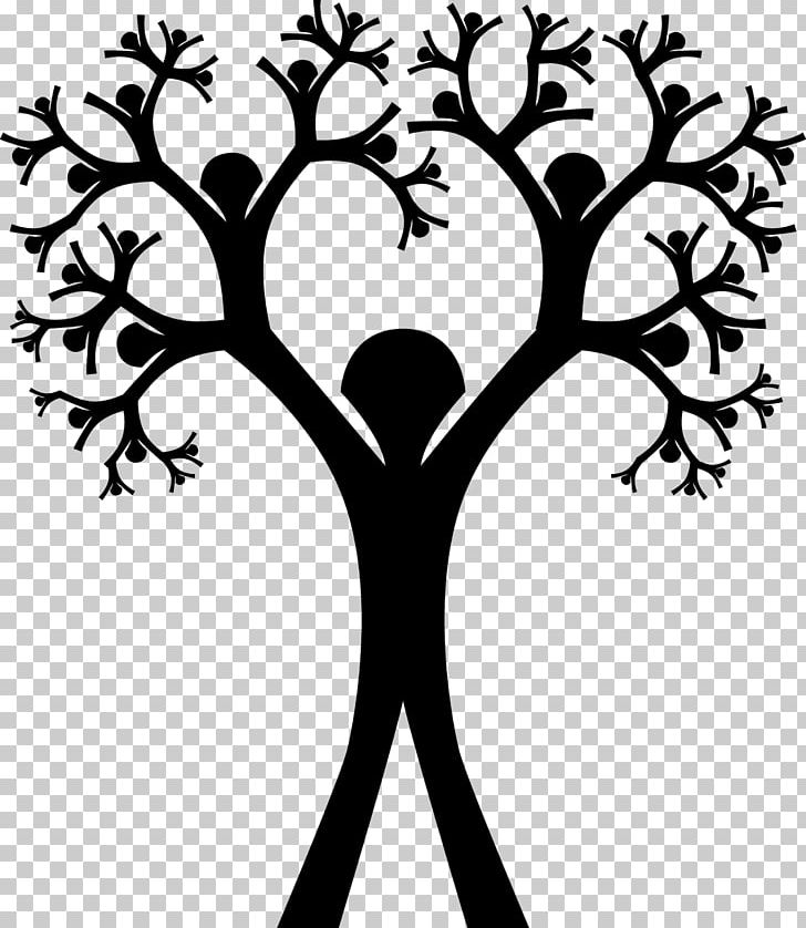 Ancestry clipart image transparent stock Family Tree Genealogy Ancestor PNG, Clipart, Ancestry, Artwork ... image transparent stock