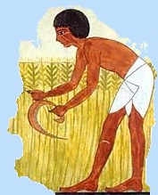 Ancient agriculture clipart images svg freeuse download Ancient Egypt for Kids - Farming & Farmers - Ancient Egypt for Kids svg freeuse download