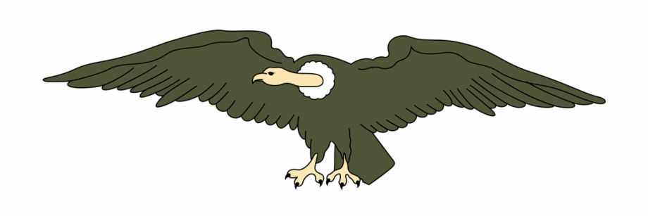 Condors clipart clipart royalty free Andean Animal Bird Condor Png Image - Clipart Images Of Vulture Free ... clipart royalty free