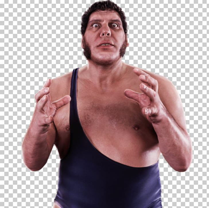 Andre the giant clipart