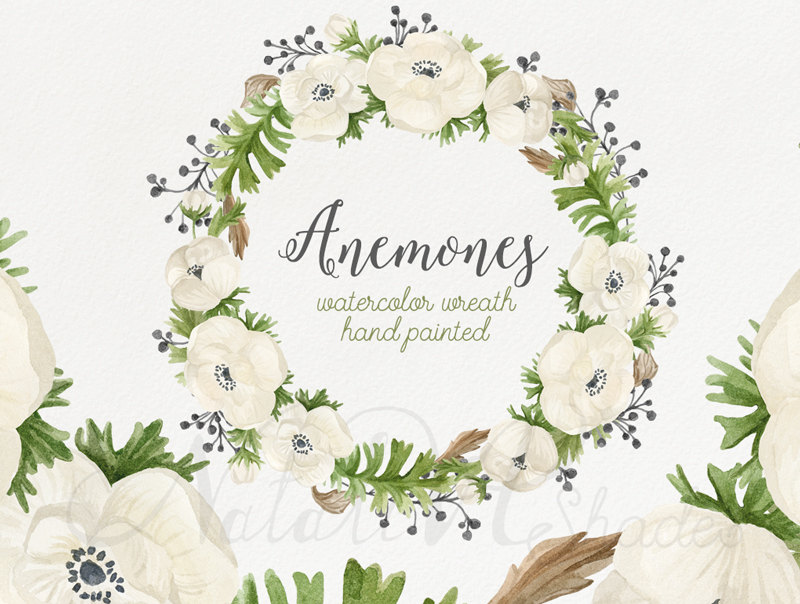 Anemone and rose clipart library Free Anemone Flower Cliparts, Download Free Clip Art, Free Clip Art ... library
