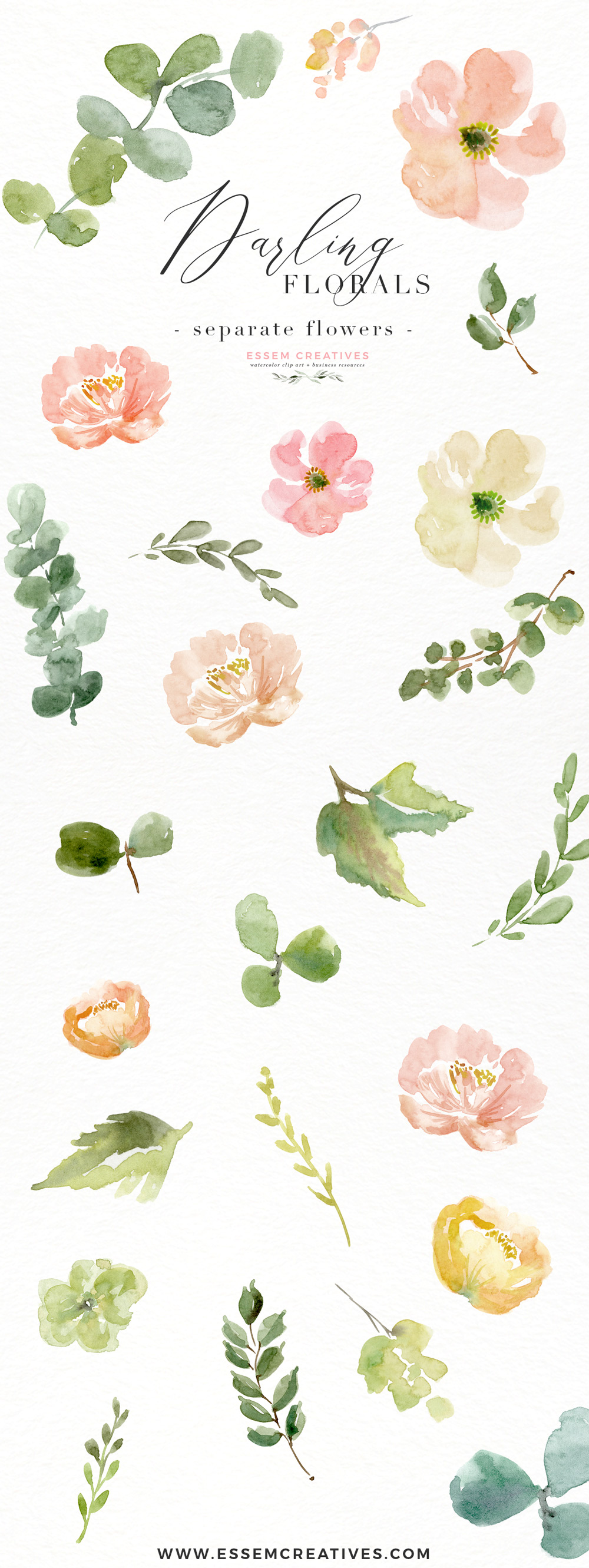 Anemone and rose clipart picture royalty free library Peach Pink Watercolor Flowers PNG Clipart, Peony Clipart, Anemone Clipart,  Floral Clip Art | Essem Creatives picture royalty free library