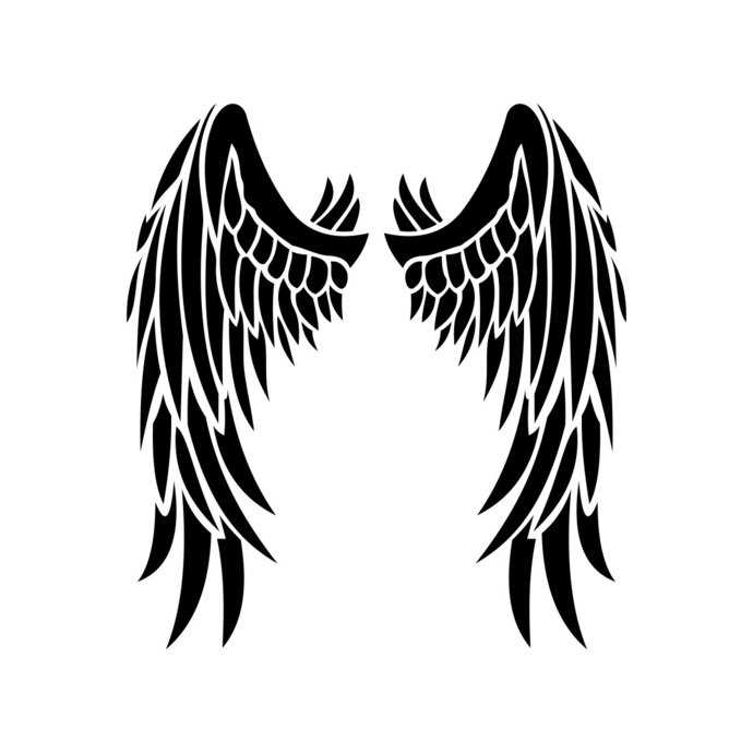 Angel wing clipart vector