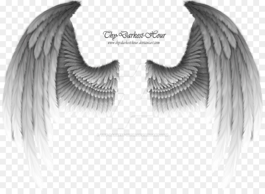 Black angel wings clipart jpg transparent Eye Cartoon clipart - Angel, Drawing, Eyelash, transparent clip art jpg transparent