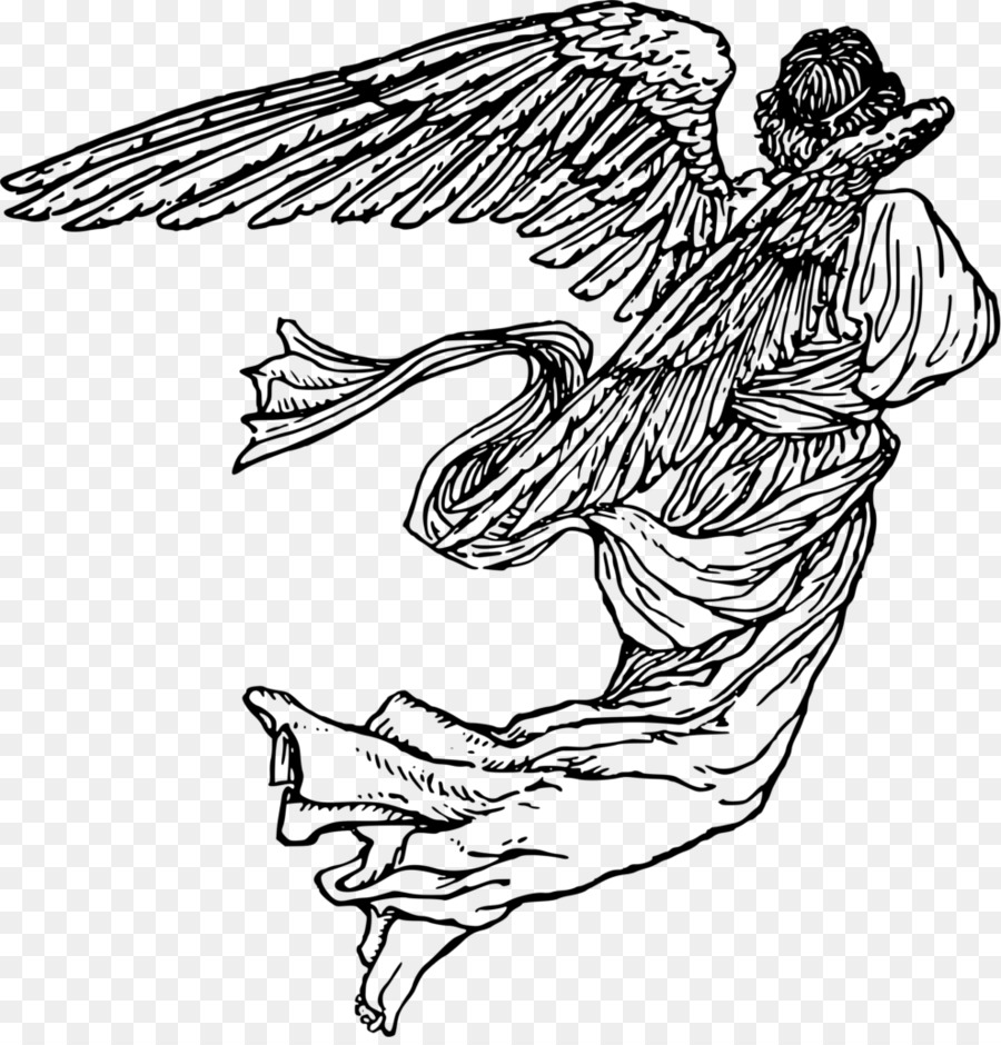 Angel line drawing clipart transparent library Bird Line Drawing png download - 988*1024 - Free Transparent Drawing ... transparent library