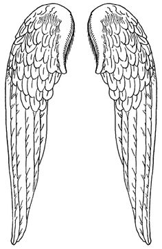 Angel wing patterns clipart.  best images about