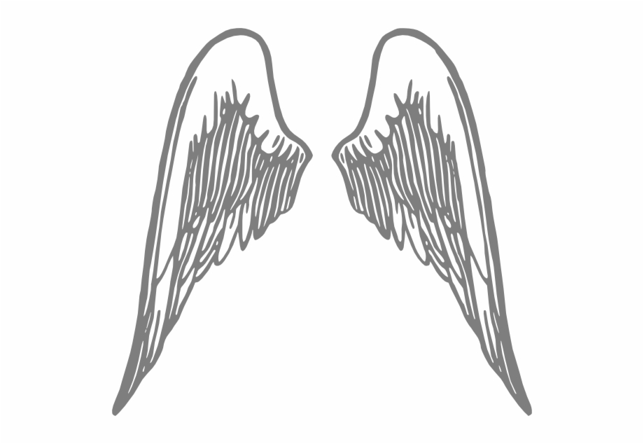 Angel wing pictures clipart free Angel Wings Grey Png - Transparent Angel Wings Clipart | Transparent ... free