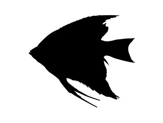 Angelfish clipart sillhoutte black and white stock Angel Fish Silhouette Custom Made Vinyl Decal by tattoosforcars ... black and white stock