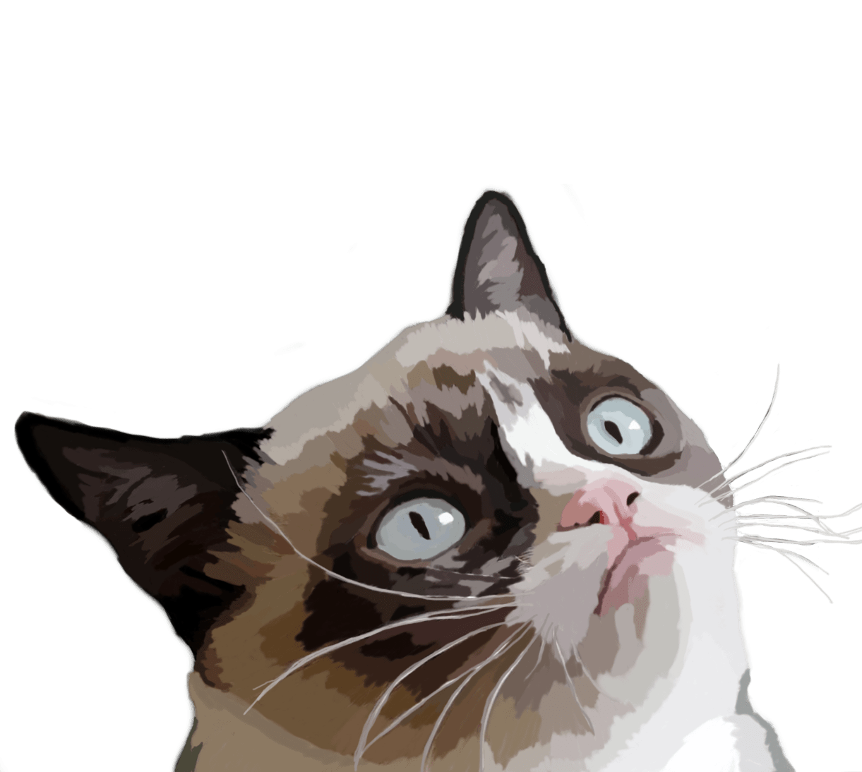 Angry cat clipart svg library download Grumpy Cat Vector Illustration transparent PNG - StickPNG svg library download
