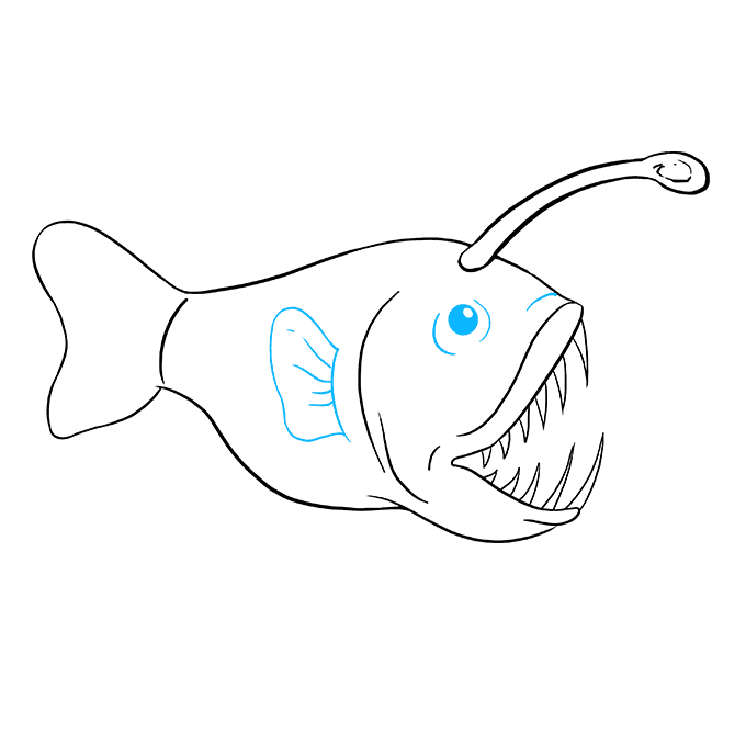Angler fish cliparts nemo png transparent download How to Draw an Angler Fish - Really Easy Drawing Tutorial png transparent download