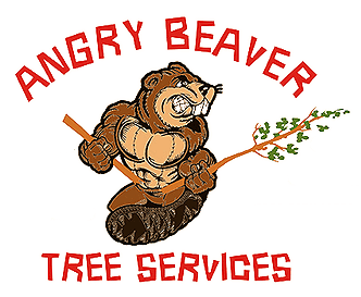 Angry beaver clipart svg royalty free download Angry Beaver Tree Service   Tree Service Lewiston & Wilson, NY ... svg royalty free download
