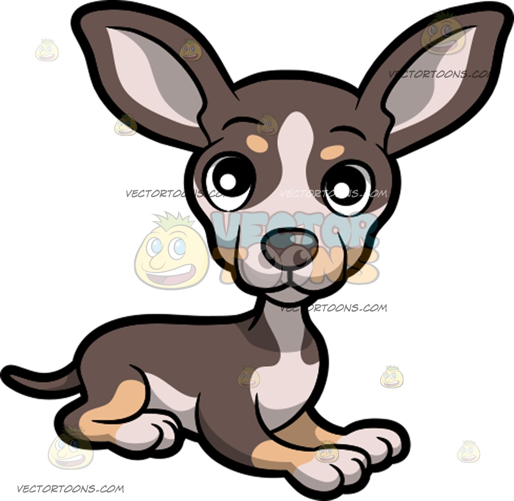 Angry chihuahua clipart png transparent stock Chihuahua Clipart | Free download best Chihuahua Clipart on ... png transparent stock