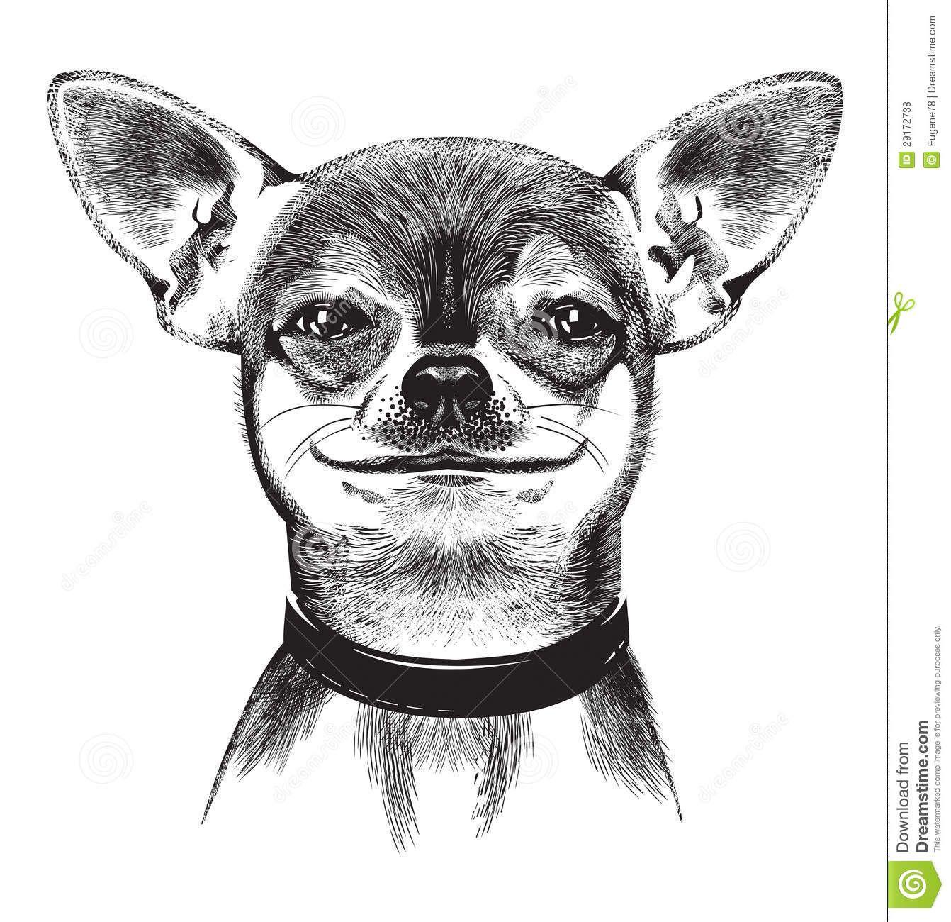 Angry chihuahua clipart vector black and white Cartoon Chihuahua Dog Clip Art Royalty Free Stock Image - Image ... vector black and white
