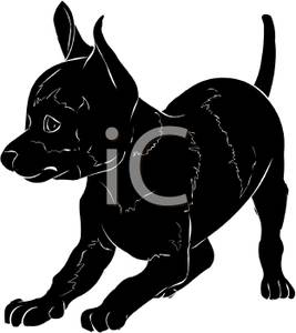 Angry chihuahua clipart clipart black and white Chihuahua Cliparts | Free download best Chihuahua Cliparts on ... clipart black and white