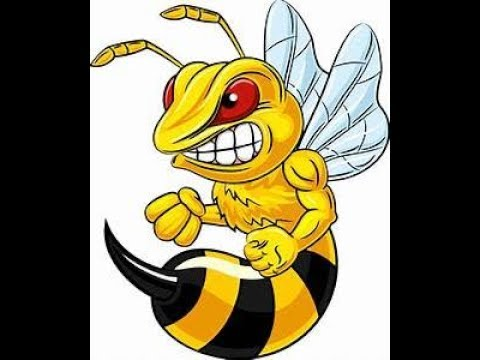 Angry yellow jacket clipart vector freeuse download The Angry Yellow Jacket (THOUSANDS ATTACKED) vector freeuse download