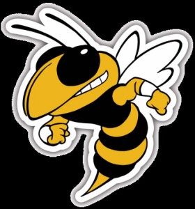 Angry yellow jacket clipart image download Create meme \