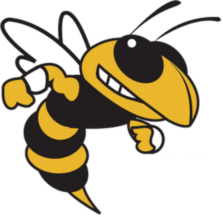 Angry yellow jacket clipart graphic free Yellow Jacket Clipart | Free download best Yellow Jacket Clipart on ... graphic free