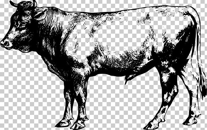 Angus beef clipart svg royalty free library Angus Cattle Beef Cattle PNG, Clipart, Angus Cattle, Animals, Beef ... svg royalty free library