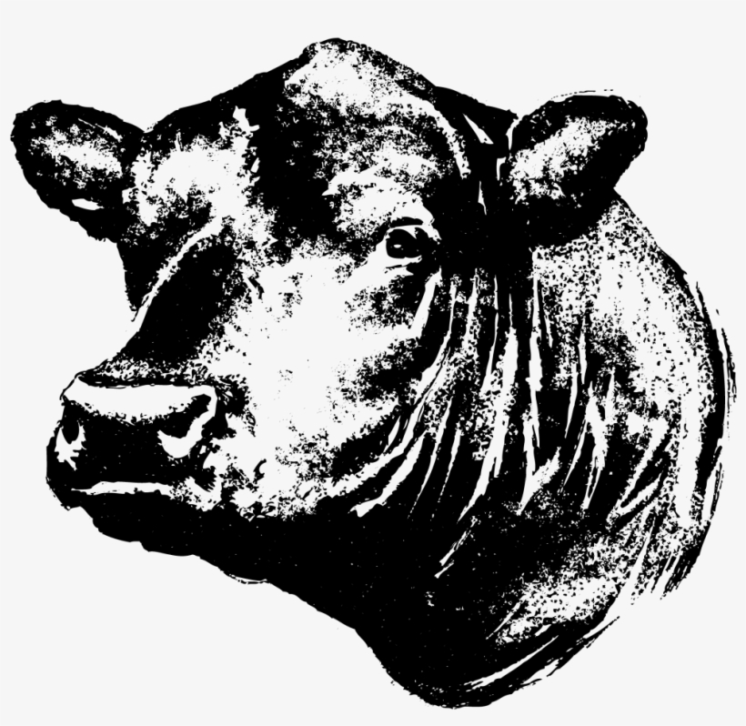 Angus beef clipart png transparent Black Angus Bull Silhouette Clipart - Black Angus Cow Head ... png transparent