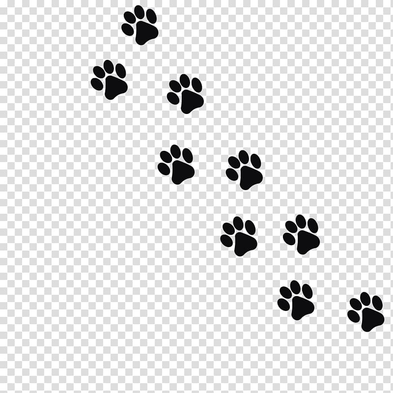 Aniaml pawprints clipart transparent clip art library Dog paw prints illustration, Cat Dog Kitten Footprint Paw, Black ... clip art library