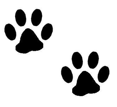 Aniaml pawprints clipart transparent clip art freeuse stock Dog Clipart Transparent Background | Free download best Dog Clipart ... clip art freeuse stock