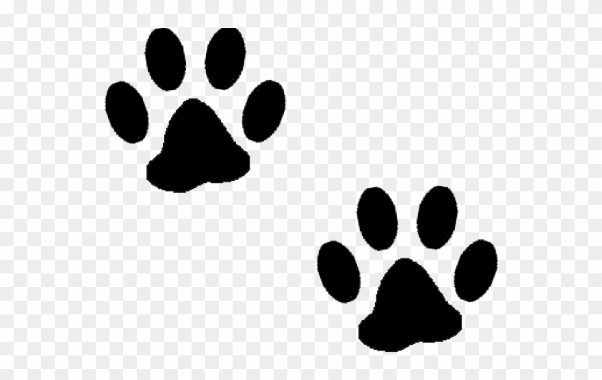 White dog paw print clipart transparent background image download Gorilla Clipart Paw Print - Dog Paw Transparent Background - Png ... image download