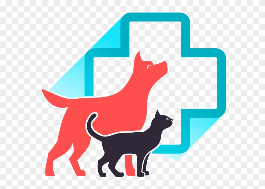 Animal clinic clipart clip transparent Veterinarian Cedar Hill Mo - Animal Clinic Clipart (#1492305 ... clip transparent