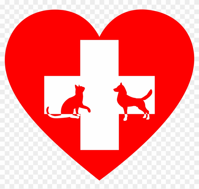 Clipart veterinary jpg transparent download This Free Icons Png Design Of Veterinary First Aid - Animal Clinic ... jpg transparent download