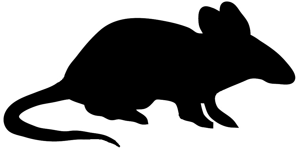Animal clipart black silhouette clipart freeuse stock Animal Silhouette, Silhouette Clip Art clipart freeuse stock
