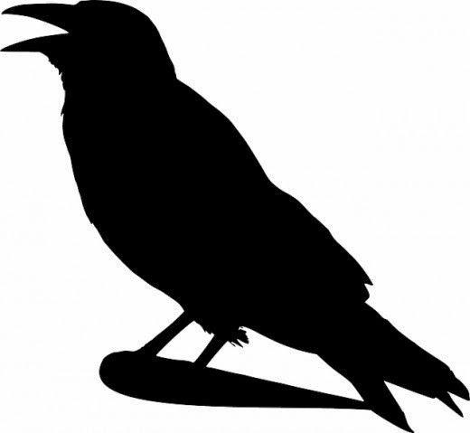 Raven silhouette free clipart