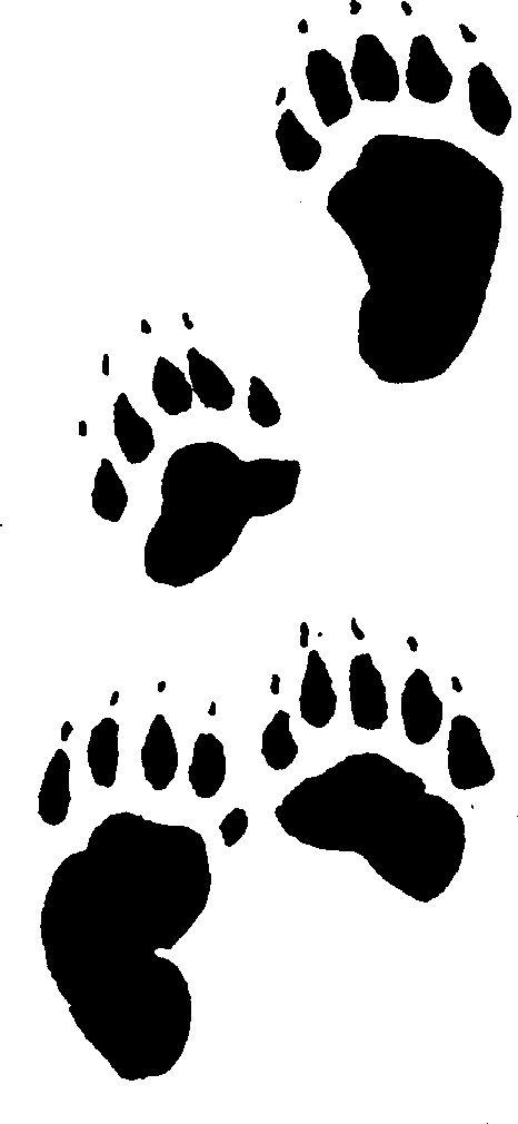 Animal footprint clipart color jpg royalty free download Animal Tracks Cliparts | Free download best Animal Tracks Cliparts ... jpg royalty free download