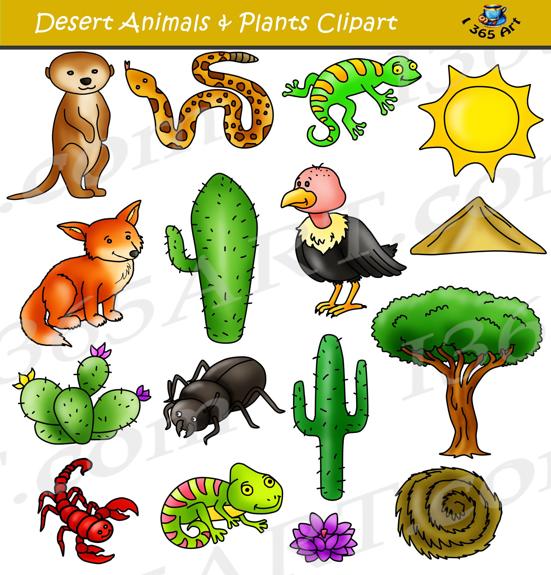 School animal clipart clip art stock Desert Clipart Set - Desert Animals & Terrain clip art stock