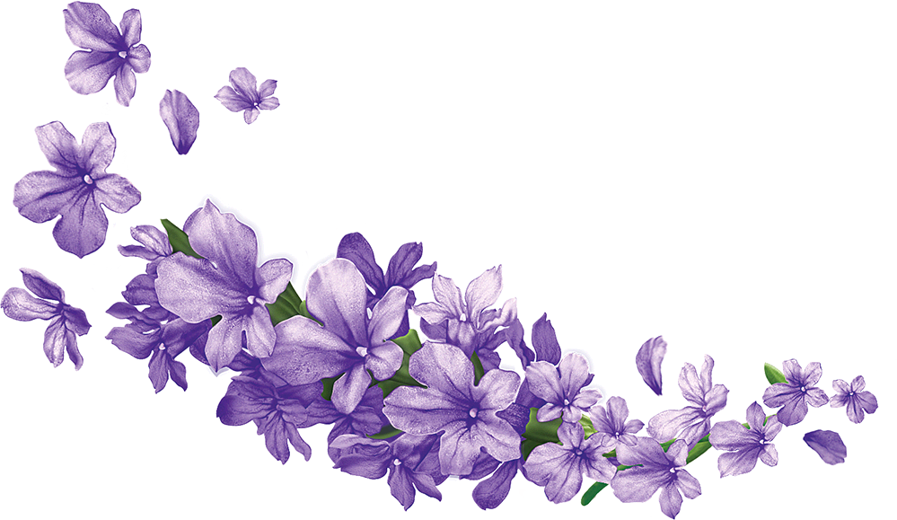Animal jam flower crown clipart graphic transparent download User blog:TotallyNotWillow/Blazingpath and Hollypetal's Wedding ... graphic transparent download