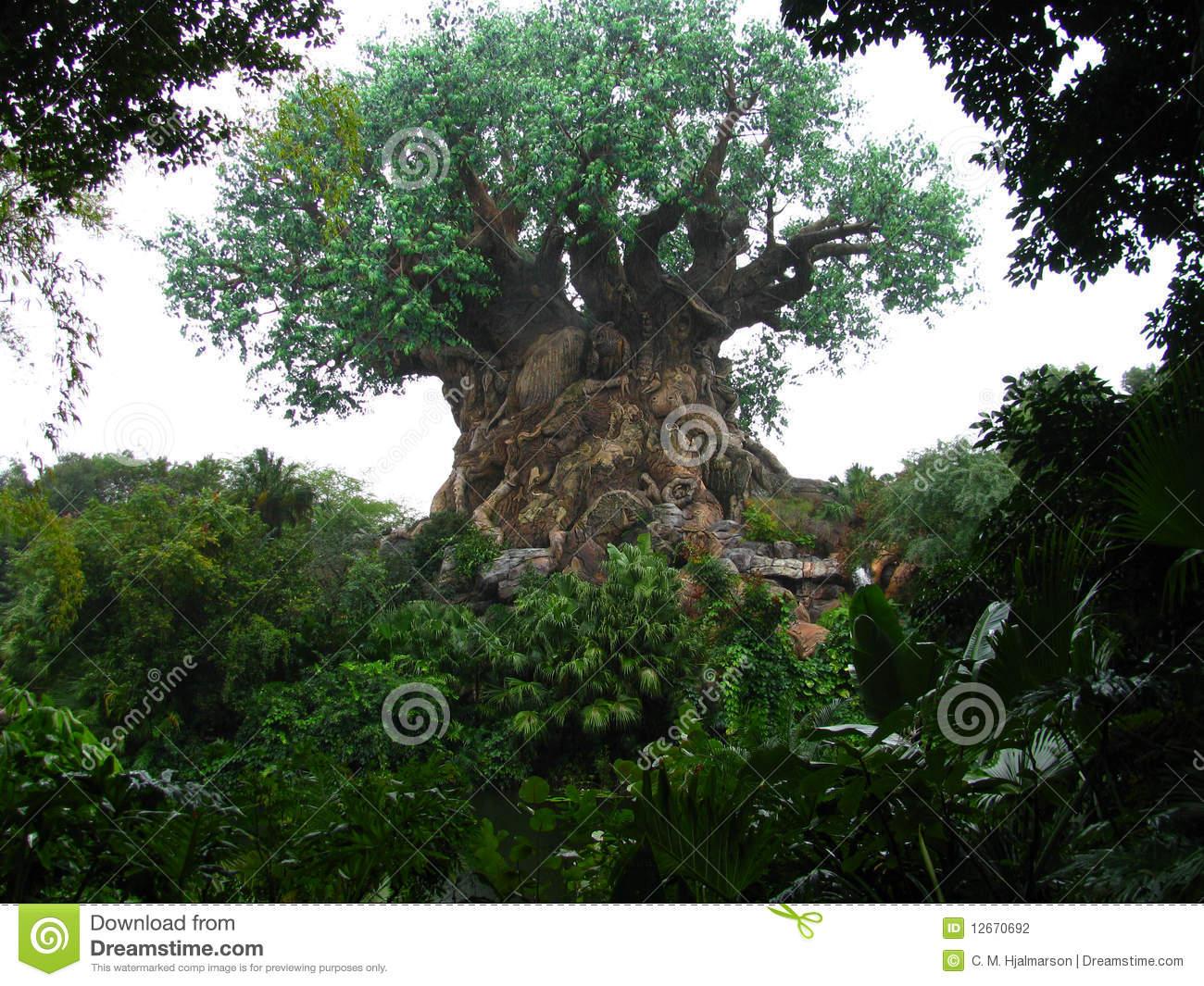 Animal kingdom tree clipart image stock Animal kingdom tree clipart - ClipartFest image stock