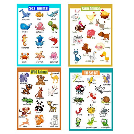 Animal number 4 clipart clipart free download 4 Pieces Laminated Educational Preschool Posters for Toddlers| Educational  Wall Charts | School Classroom Posters | Class Decorations for ... clipart free download