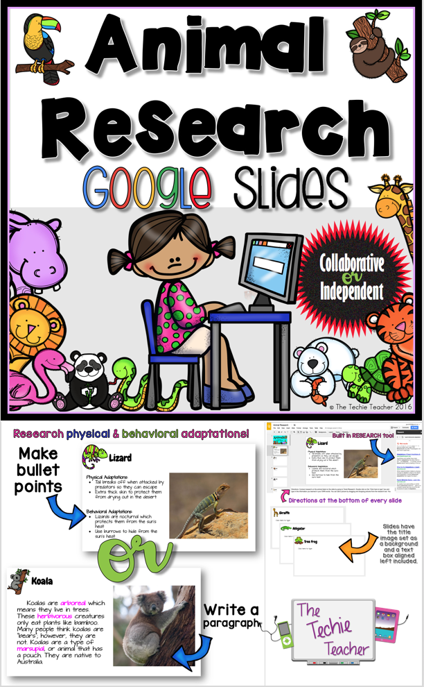 Animal research project kindergarten clipart