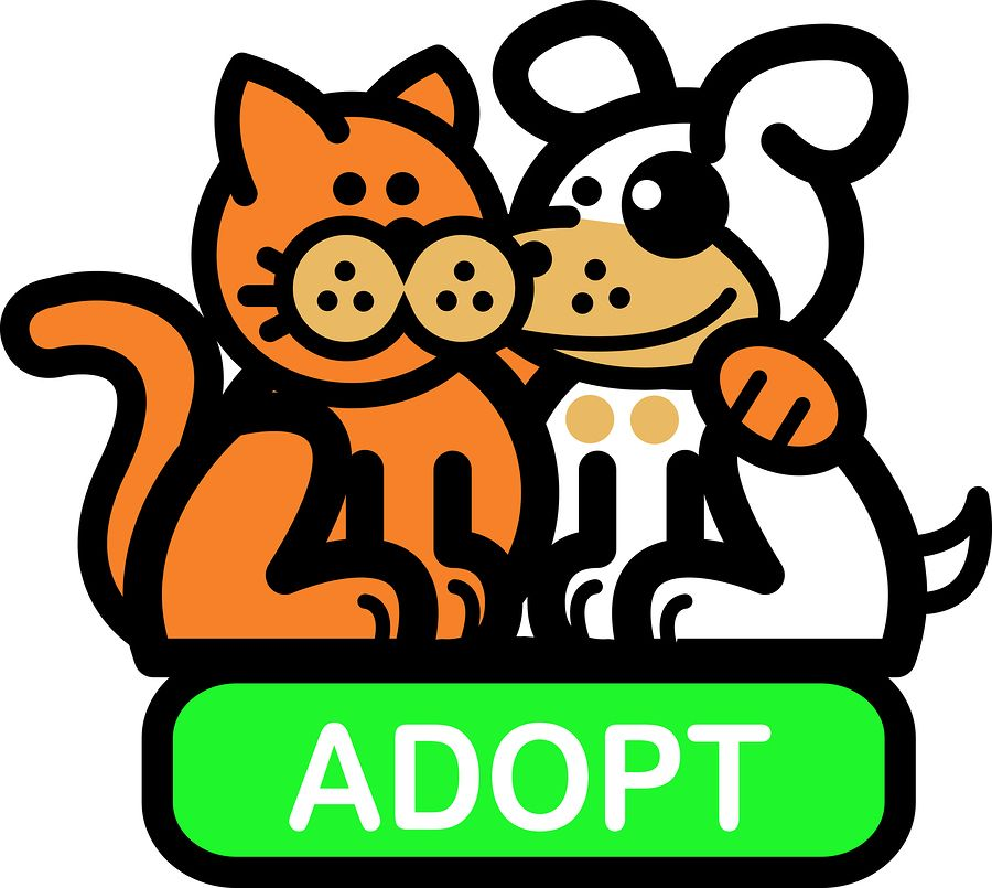 Animal shelter clipart jpg free library Pet adoption clipart | Stock Image and Music Resources | Shelter ... jpg free library