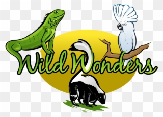 Animal show clipart clipart black and white Logo - Wild Wonders Animal Show Clipart (#472801) - PinClipart clipart black and white